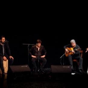 flamenco vignette